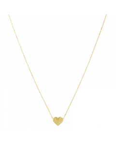 14k Yellow Gold Necklace with Heart